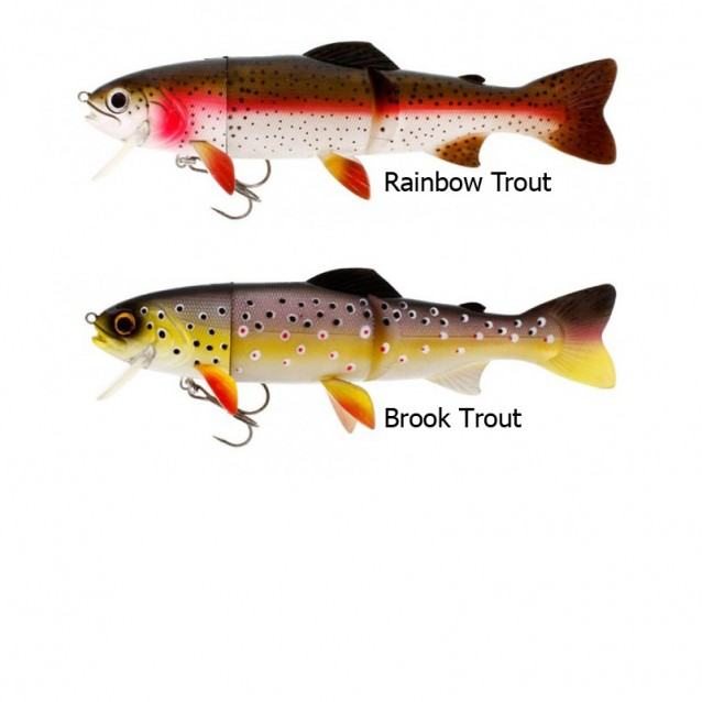 Tommy the Trout