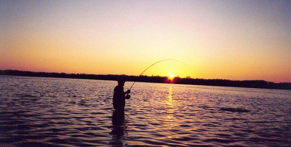Риболов на булдо с придърпване