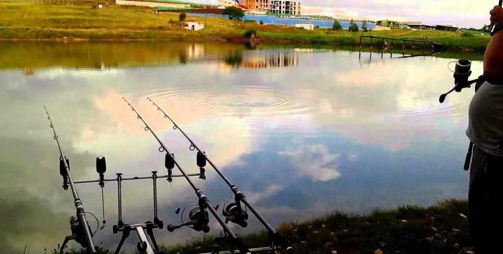 Риболовът като бизнес. За платеният риболов и щуката
