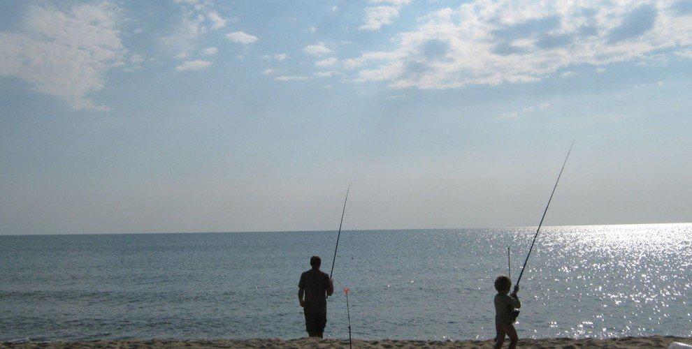 Няколко вида морски риби, които може да уловите в морето